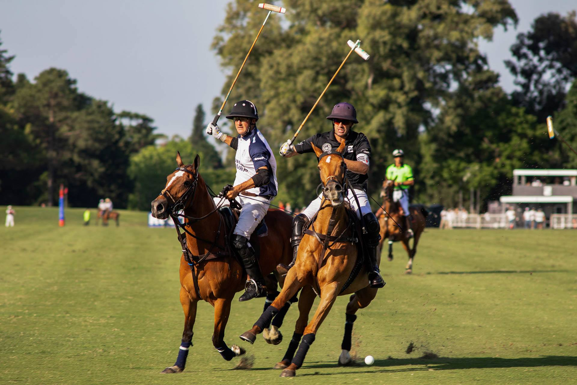 Hurlingham Club Polo