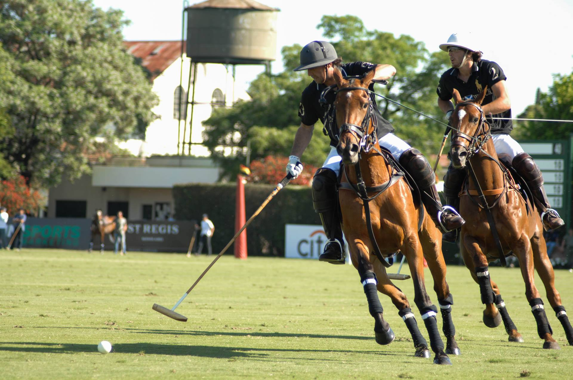 Hurlingham Club Polo 5